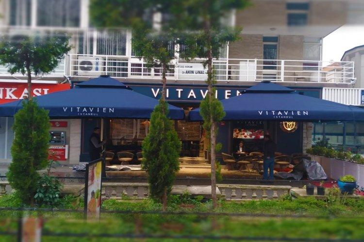Vitavien